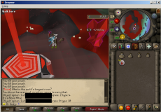 Draynor  OSRS Server with Raids  Inferno