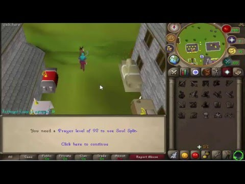 ValorPS 317 Flawless PVM CUSTOMS 100 PETS